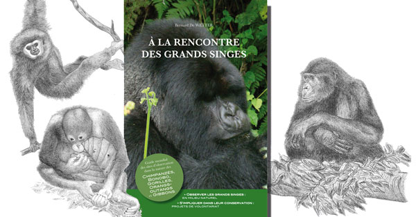 À la rencontre des grands singes. Guide mondial des sites d'observation